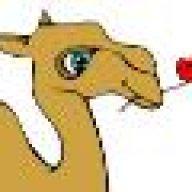 Kamelie