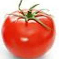 Couch Tomato